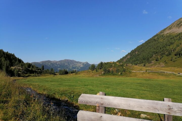 View from the Pojenalm towards Speikboden